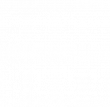 STEINFIX 10